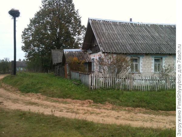 Дом возле лучшего колодца в деревне. Видно гнездо аистов и вдалеке мой домишко