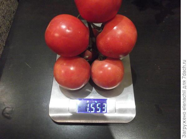 """Кисть томата """"Малиновый сюрприз"""""""