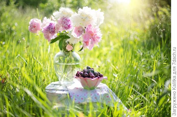 Каковы любимые занятия садоводов и цветоводов?