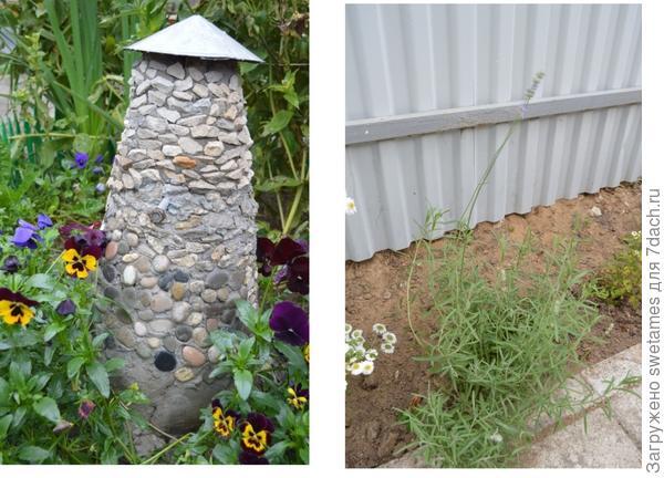 Лаванда в саду и будущая мельница