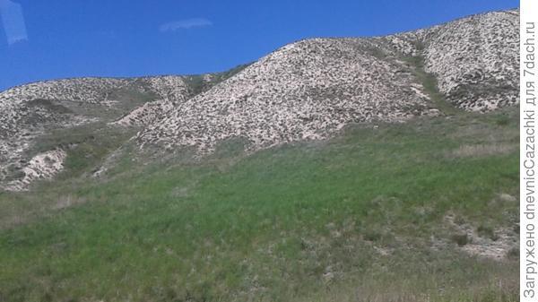 Самые  крупные  в Европе  меловые  горы.  Массив  протянулся  до  Саратова.