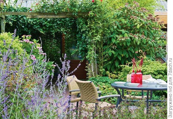Пряно-ароматические растения используют и при создании ландшафтов, занимающих несколько гектаров земли, и на небольших участках . Фото Марии Ромакиной.