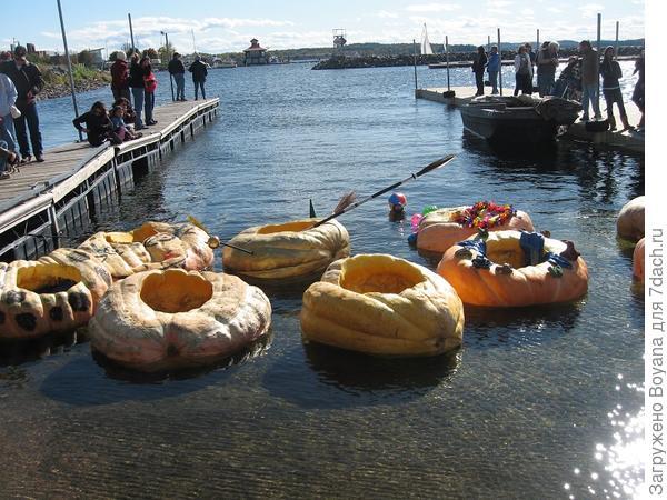Лодки из тыкв. Фото с сайта http://blog.uvm.edu/bmervis/