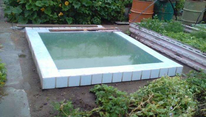 Наш любимый собственный бассейн на даче, выстроенный в 2016 году