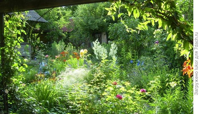 Как не перетрудиться в саду