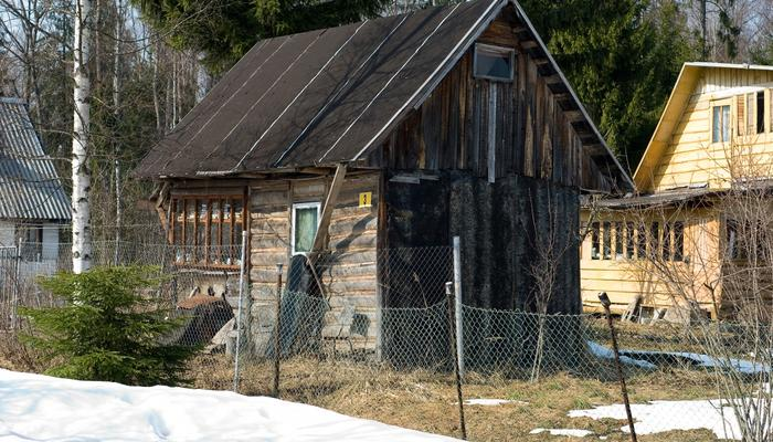 Какие проблемы могут поджидать весной на даче, и как с ними справиться