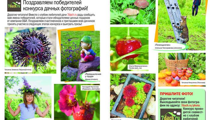 """Фотографии победителей - в журнале """"Дом в саду""""!"""