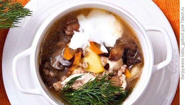 Суп из гуся с перловой крупой, грибами и яблоками