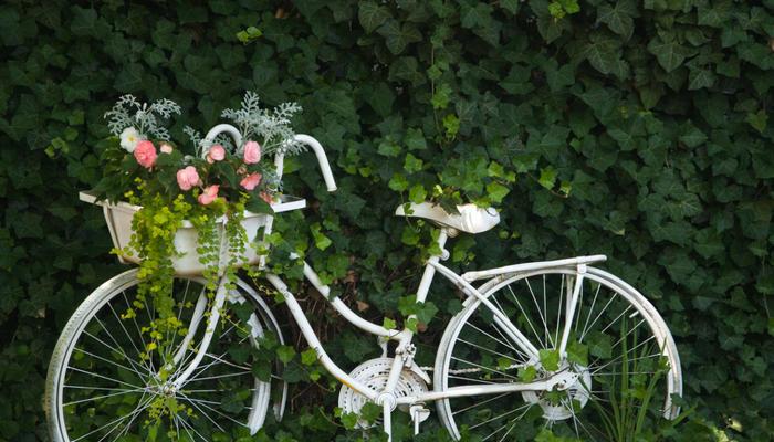Девять новых жизней старого велосипеда