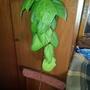 Кто-то выбросил цветок, а я хочу его спасти. Подскажите, как он называется?