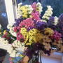 Подскажите, как называются эти цветочки?