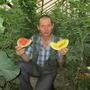 Дегустация — ответственный момент!  Оранжевый медок, из жёлтых, самый сладкий.