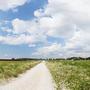 Фотографии и отзывы о коттеджном поселке «Земляничные поля» (Раменский р-н МО)