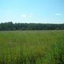 Фотографии и отзывы о коттеджном поселке «Жемчужный» (Орехово-Зуевский р-н МО)