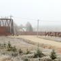 Фотографии и отзывы о коттеджном поселке «Исток» (Наро-Фоминский р-н МО)