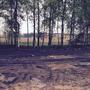 Фотографии и отзывы о коттеджном поселке «Купавушка» (Балашихинский р-н МО)