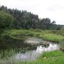 Фотографии и отзывы о коттеджном поселке «Искона» (Можайский р-н МО)