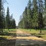 Фотографии и отзывы о коттеджном поселке «Пушкинские пруды» (Пушкинский р-н МО)