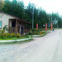 Фотографии и отзывы о коттеджном поселке «Золотая сотка» (Выборгский р-н ЛО)
