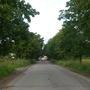 Фотографии и отзывы о коттеджном поселке «Сокол 2» (Гатчинский р-н ЛО)