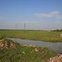 Фотографии и отзывы о коттеджном поселке «Новая Грачевка» (Тосненский р-н ЛО)