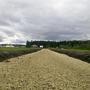 Фотографии и отзывы о коттеджном поселке «Чикино» (Гатчинский р-н ЛО)