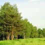 Фотографии и отзывы о коттеджном поселке «Екатерининское» (Ломоносовский р-н ЛО)