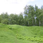 Фотографии и отзывы о коттеджном поселке «Холмистый» (Всеволожский р-н ЛО)