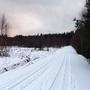 Фотографии и отзывы о коттеджном поселке «Ближний хутор» (Выборгский р-н ЛО)