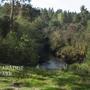 Фотографии и отзывы о коттеджном поселке «Paradise Park» (Выборгский р-н ЛО)