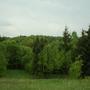 Фотографии и отзывы о коттеджном поселке «Лесные дачи» (Можайский р-н МО)