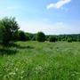 Фотографии и отзывы о коттеджном поселке «Зеленая горка» (Сергиево-Посадский р-н МО)