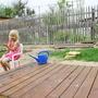 Посоветуйте, что посадить, чтобы украсить детский уголок и отгородить его от чужих глаз?