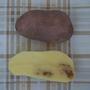 Что это за болячка на картофеле и что мне ждать от такого урожая?