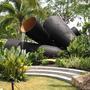 Золотые медалисты Сингапурского фестиваля садового дизайна