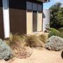 Сад Фионы Брокхофф — дизайн в содружестве с природой