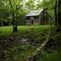 Очаровательная коллекция домиков в лесу на любой вкус — выбираем свой!