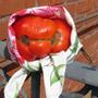Подбрасывает ли Природа в ваши сады и огороды фрукты и овощи забавной формы?