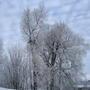 Зимнее небо.