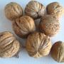 Мне хотелось бы узнать про сорт грецкого ореха, который растет у нас на даче