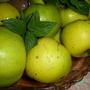 Яблочки моченые, сочные, наливные