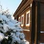Ремонт стены рубленого бревенчатого дома