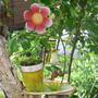 Что делать с корой старой яблони?