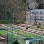 Рациональная площадь огорода для семьи из трех-пяти человек: сколько соток?