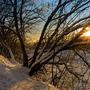 Солнечный вечер в пойме Москвы-реки