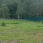 Куда применить много скошенной высокой травы с семенами?