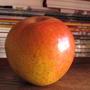 Помогите определить сорт яблони по плоду