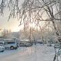 Январское вечернее, румяное от мороза солнышко!