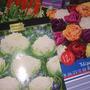 Можно ли сажать цветочные луковицы не в открытый грунт, а в горшки?