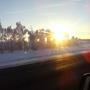Утреннее солнышко!